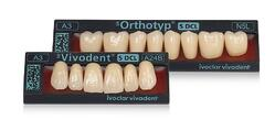SR Vivodent S DCL is a distinctive anterior tooth for sophisticated needs.