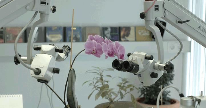 Zahntechnisches Labor INN-Keramik.