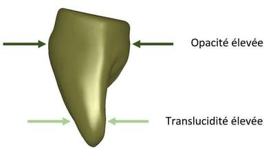 Rapport opacité/translucidité